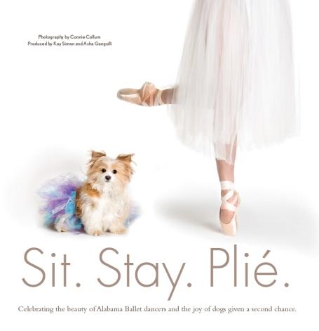 sitstayplie_cover
